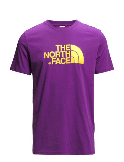 THE NORTH FACE m Easy Tee,Iris  Purple